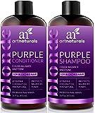 ArtNaturals - Color Balance and Tone Purple - Shampoo and Conditioner Set - (2x 16 Fl Oz 473ml)