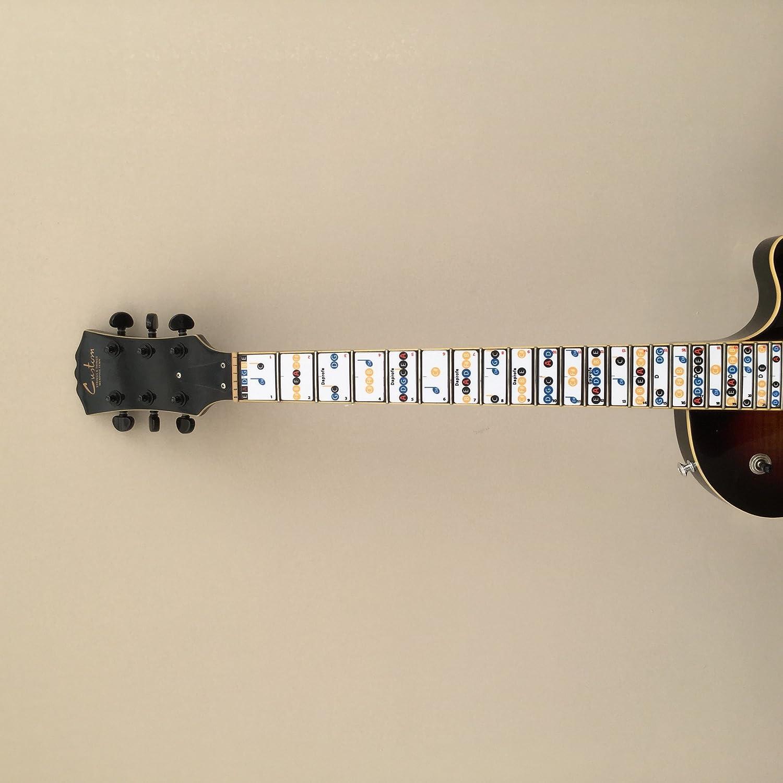 daprofe diapasón Nota Mapa Eléctrico/guitarra acústica 22 Blues Nota guía pegatinas: Amazon.es: Instrumentos musicales