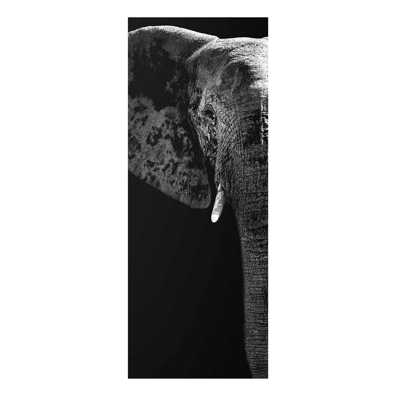 Bilderwelten Glasbild - Afrikanischer Elefant schwarz-Weiss - Panorama Hoch, Größe HxB  125cm x 50cm