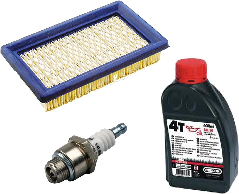 Honda GXV gardexx Filtre /à air plat Filtre /à air Bougie dallumage pour tondeuse /à gazon MTD ThorX