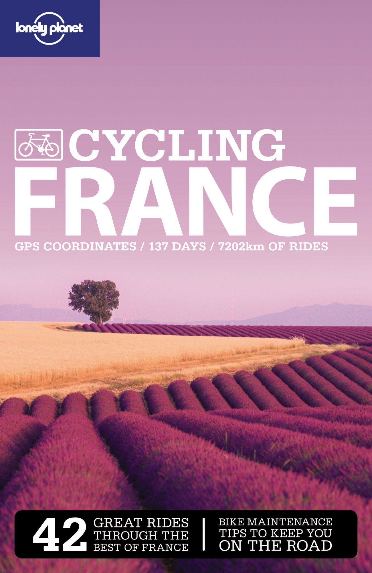 Lonely Planet Cycling France (travel Guide): Lonely Planet, Ethan Gelber:  9781741040449: Amazon: Books