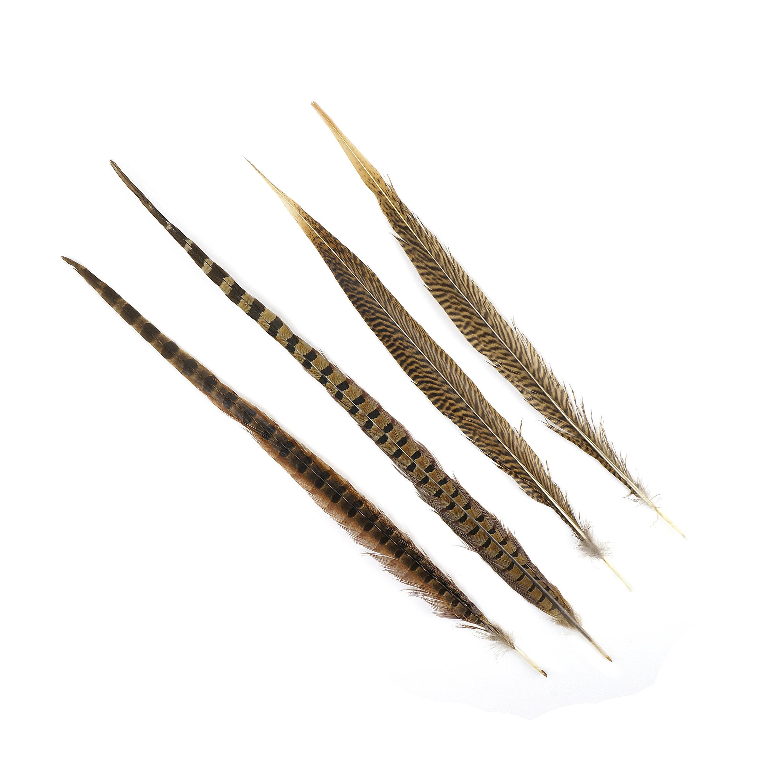 ZUCKER Pheasant Tails Assorted - Natural -16 -30'' by ZUCKERTM