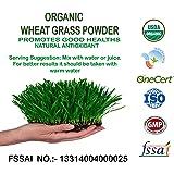Perennial Lifesciences Organic Wheat Grass Powder, 250gm
