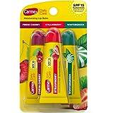 CARMEX Moisturizing Lip Balm Variety Pack - Fresh Cherry, Strawberry, Wintergreen .35 oz tube