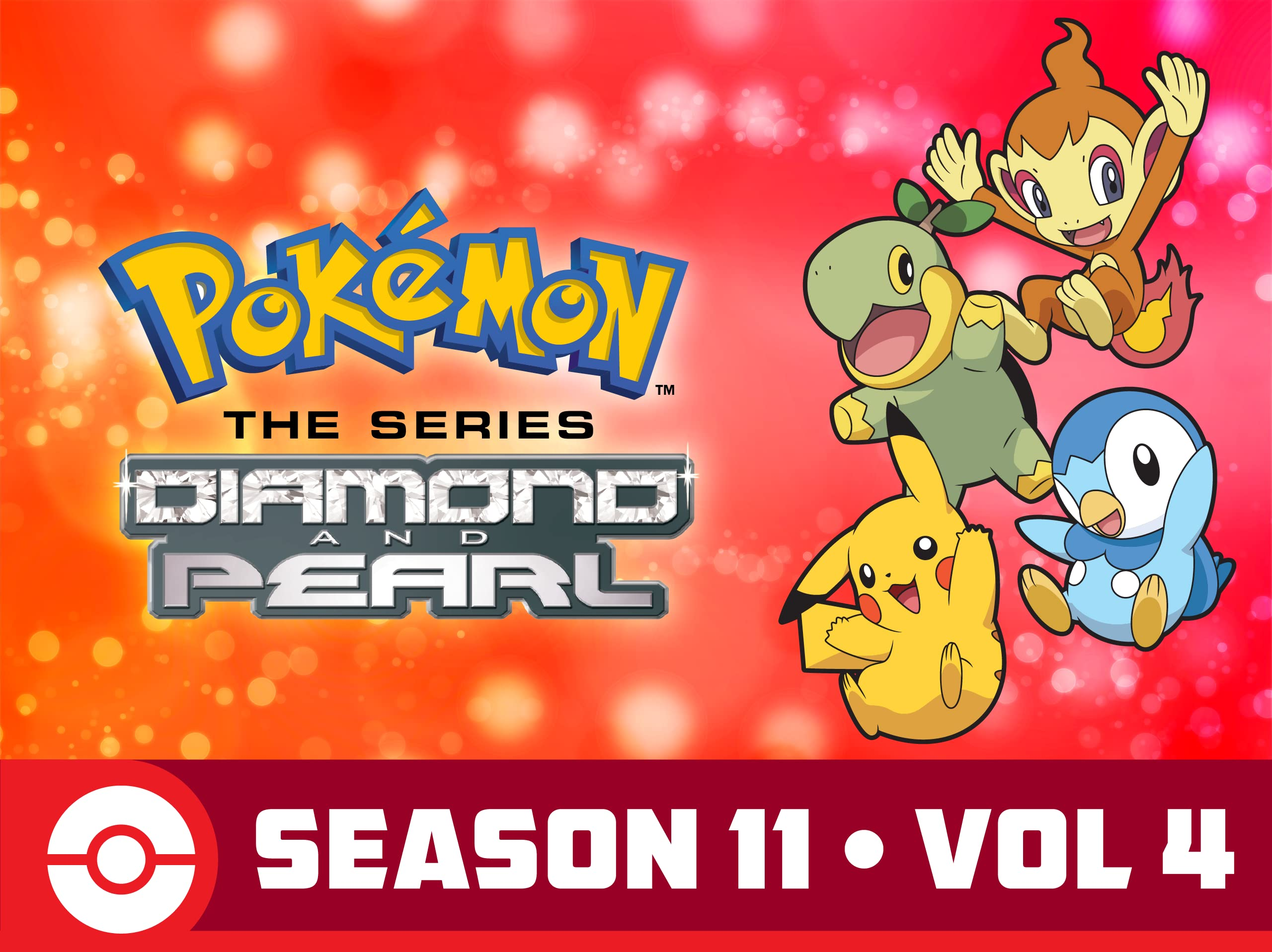 Pokémon the Series: Diamond and Pearl - Season 1104