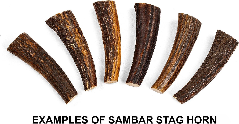 1 pc sambar stag taper 18