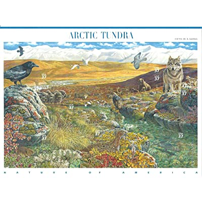 Arctic Tundra, Full Sheet of 10 x 37-Cents Postage Stamps, USA 2003, Scott 3802: Toys & Games