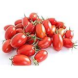 フルーツ 系 アイコ トマト ミニ トマト 熊本 県 産 約 3kg