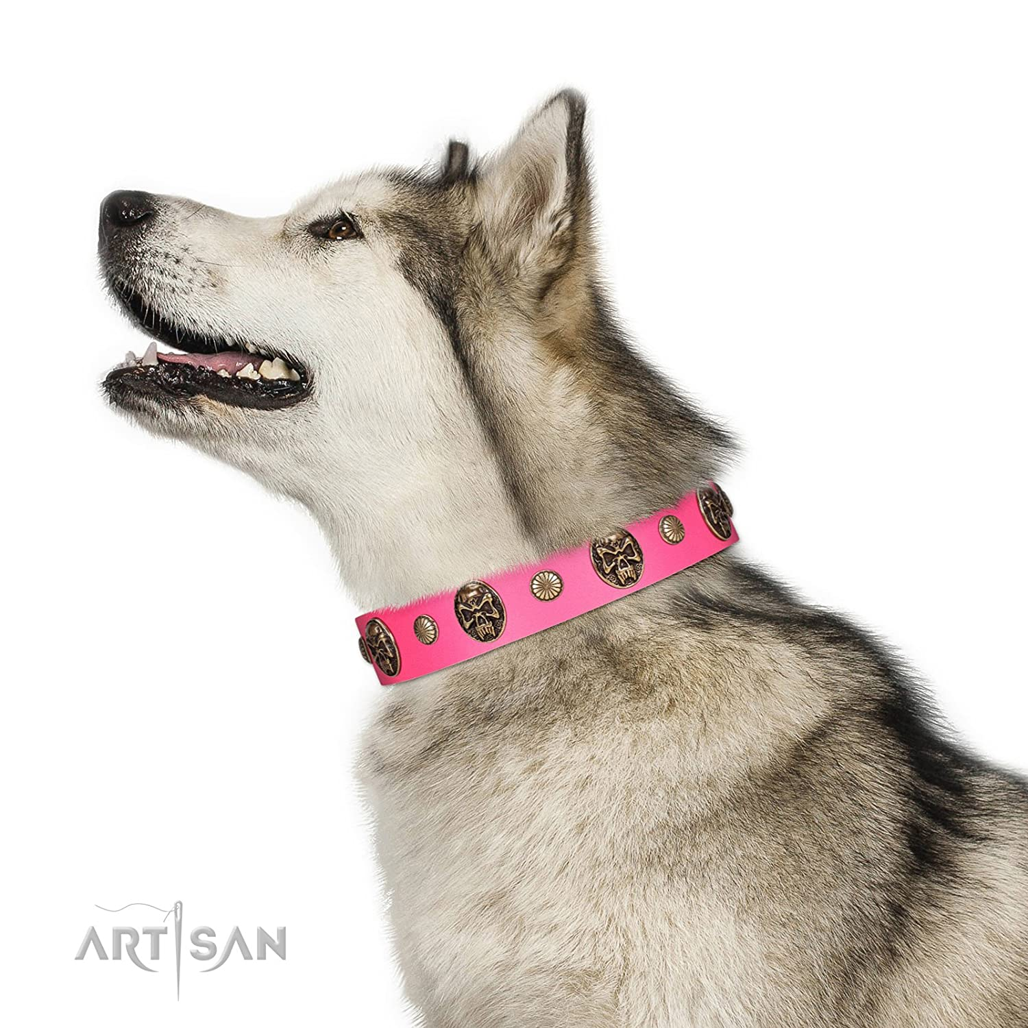 Fits for 17 inch (43cm) dog's neck size 17 inch FDT Artisan Pink Leather Dog Collar Adorned with Conchos and Medallions Ms Pinky Fluff 1 1 2 inch (40 cm) Wide Gift Box Included