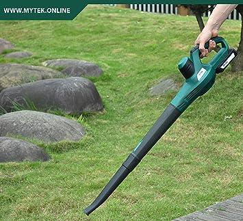 Mytek - Aspirador soplador, color verde: Amazon.es: Jardín