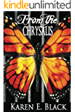 From the Chrysalis: a novel (The Devereux Cousins Book 1)