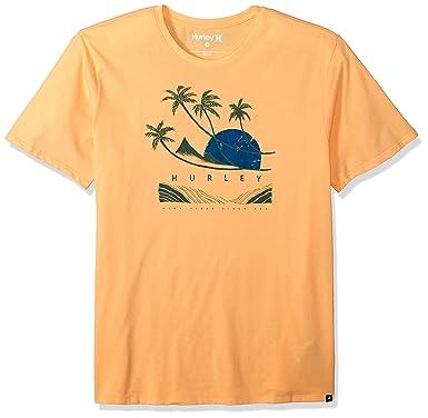 0732a4fc Amazon.com: Hurley Men's Nike Dri-fit Premium Short Sleeve Tshirt ...