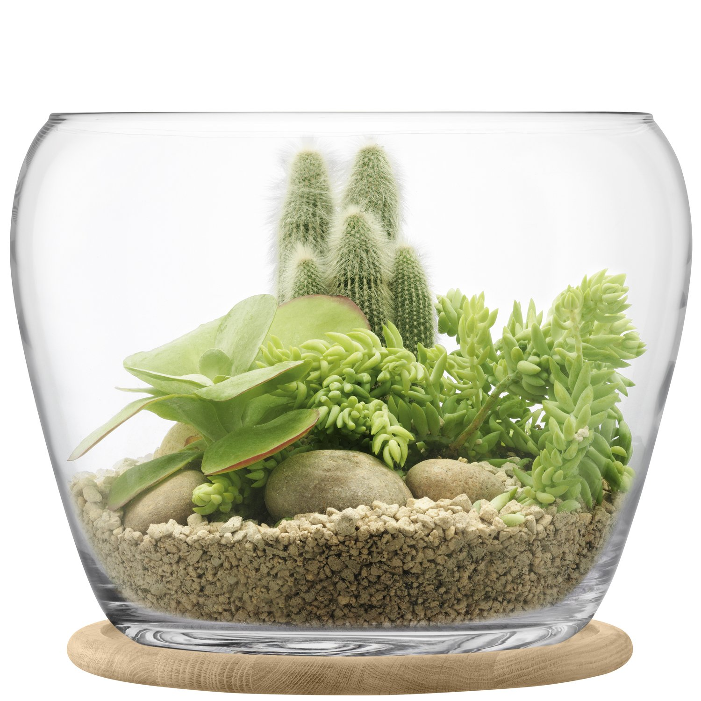 LSA フラワーベース花器 Clear W18xD18xH26.5cm LTT11 B074TNWLBQ W18xD18xH26.5cm  W18xD18xH26.5cm