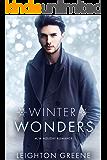 Winter Wonders (MM Holiday Romance Book 1)