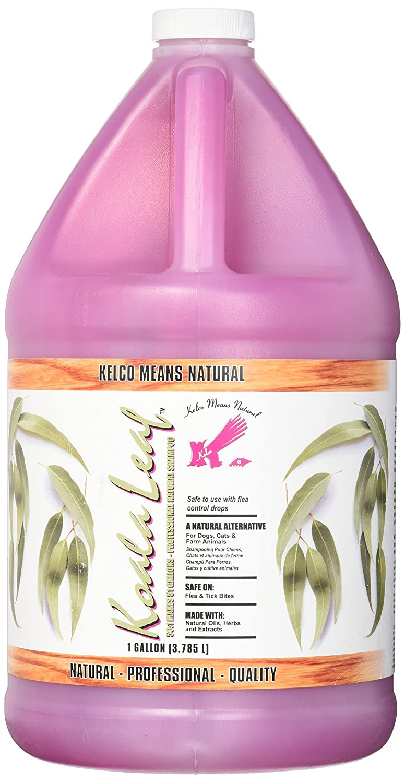 : Amazon.com: Kelco Koala Leaf Shampoo Gallon