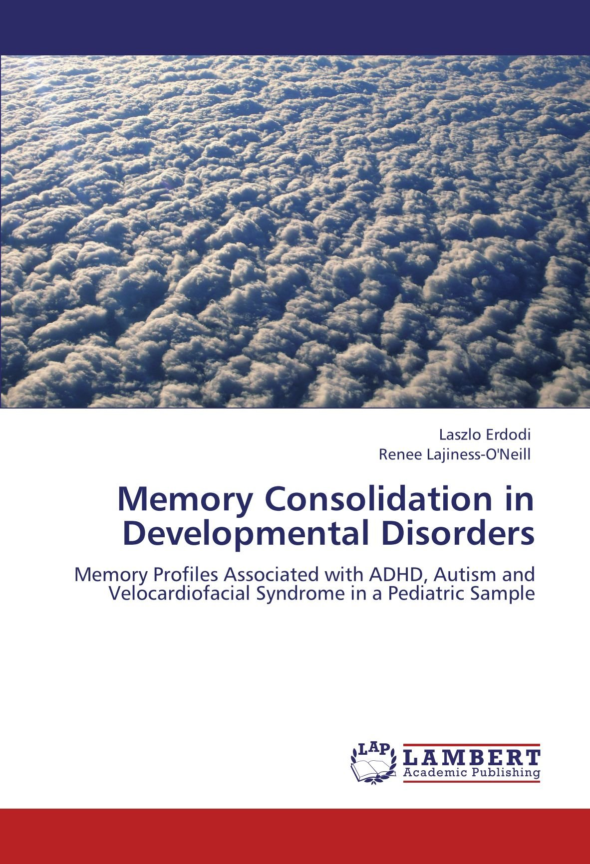 Download Memory Consolidation in Developmental Disorders: Memory Profiles Associated with ADHD, Autism and Velocardiofacial Syndrome in a Pediatric Sample pdf epub