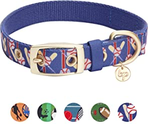 Blueberry Pet Soft & Comfortable Sports Design or Jacquard Design Padded Dog Collar