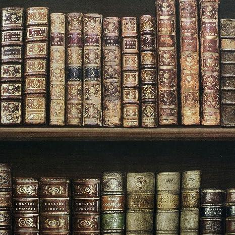 Antique Bookcase Wallpaper Brown 575208