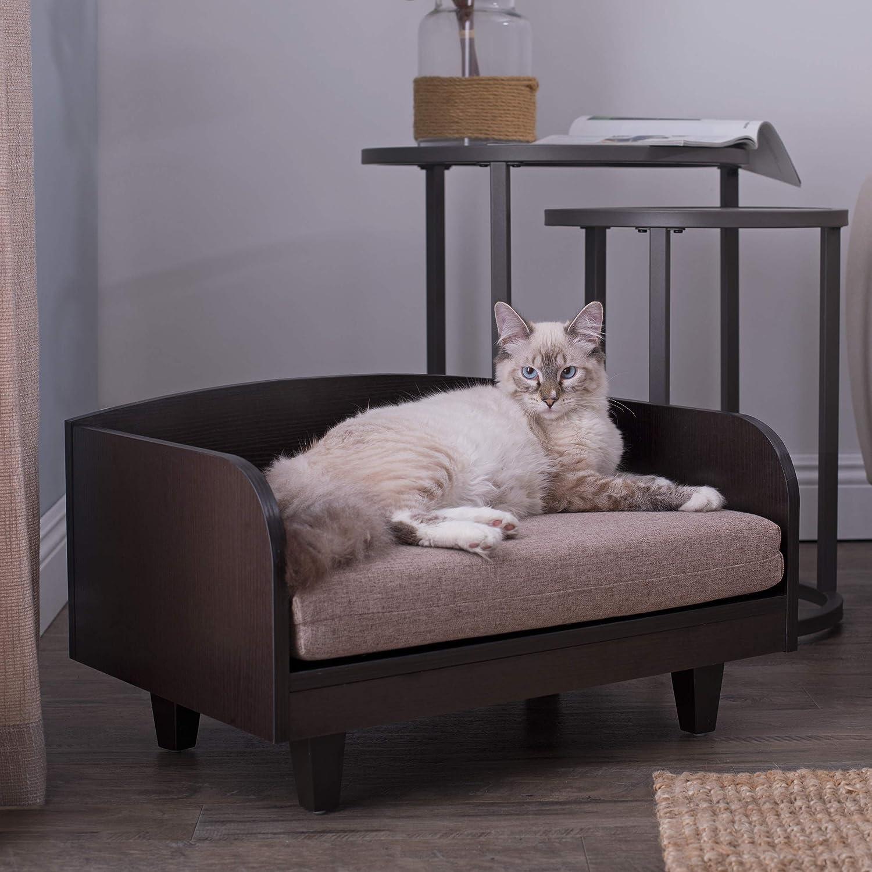 Amazon.com: Studio Designs Paws y purrs Raised Pet Bed: Mascotas