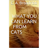 What You Can Learn From Cats (English Edition)