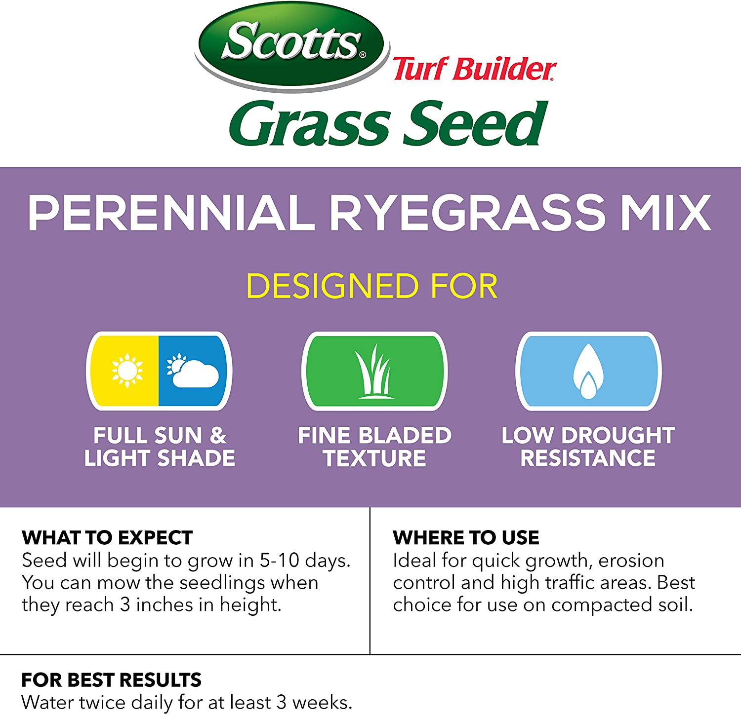 Scotts Turf Builder Grass Seed Perennial Ryegrass Mix, 7.lb. - Full Sun and Light Shade - Quickly Repairs Bare Spots, Ideal for High Traffic Areas and Erosion Control - Seeds up to 2, 900 sq. ft. : Grass Plants : Garden & Outdoor
