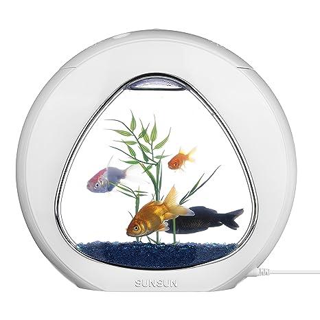 Tmei LED Pecera Fishhotel Acuario de Escritorio Completo del Regalo para Oficina y Hogar Tanque de
