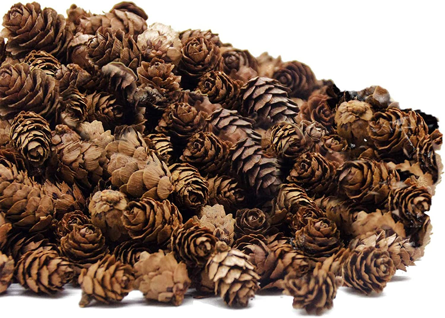 Deloky 250 PCS Christmas Natural Mini Pine Cones-Thanksgiving Pinecones Ornaments for DIY Crafts, Home Decorations ,Fall and Christmas ,Wedding Decor