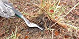 Hand Weeder For Lawn and Garden Care, The Perfect