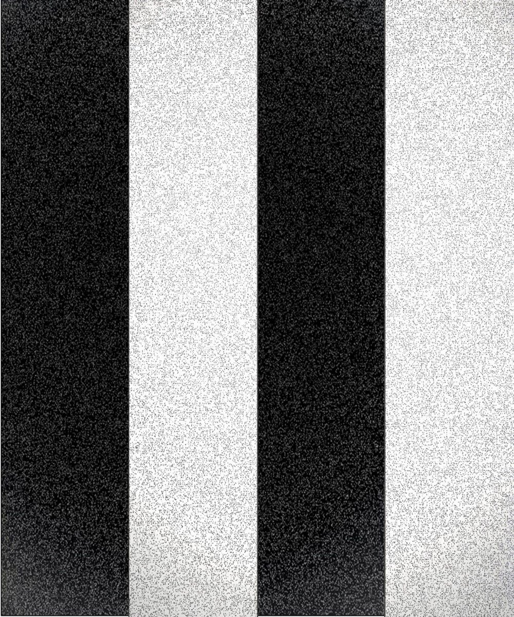 Fine Decor Glitz Stripe Black White Silver Glitter Textured Wallpaper DL40860