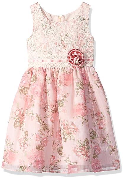 a20fb628991 Amazon.com  Jayne Copeland Little Girls  Lace Boice with Chiffon ...