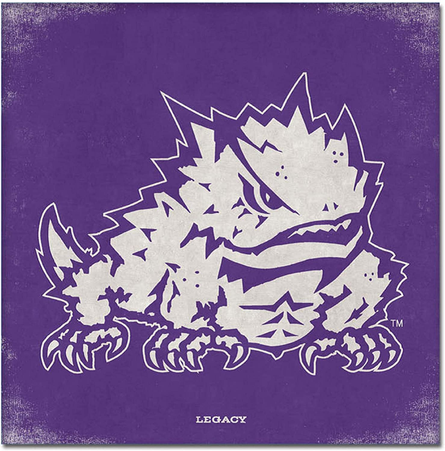 Custom NCAA Legacy Tcu Horned Frogs Mini Canvas Art 9x9 One Size