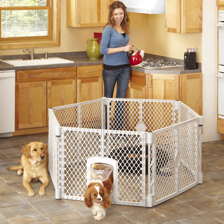 Amazon Mypet Petyard Passage 8 Panel Pet Containment Pet