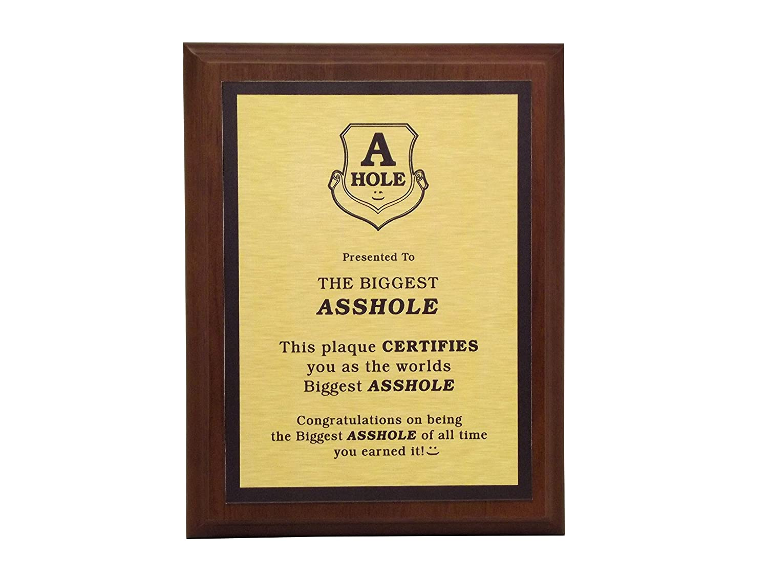 Amazon.com : Aahs Engraving Worlds Greatest Plaques (The Biggest Asshole,  Gold) : Office Products