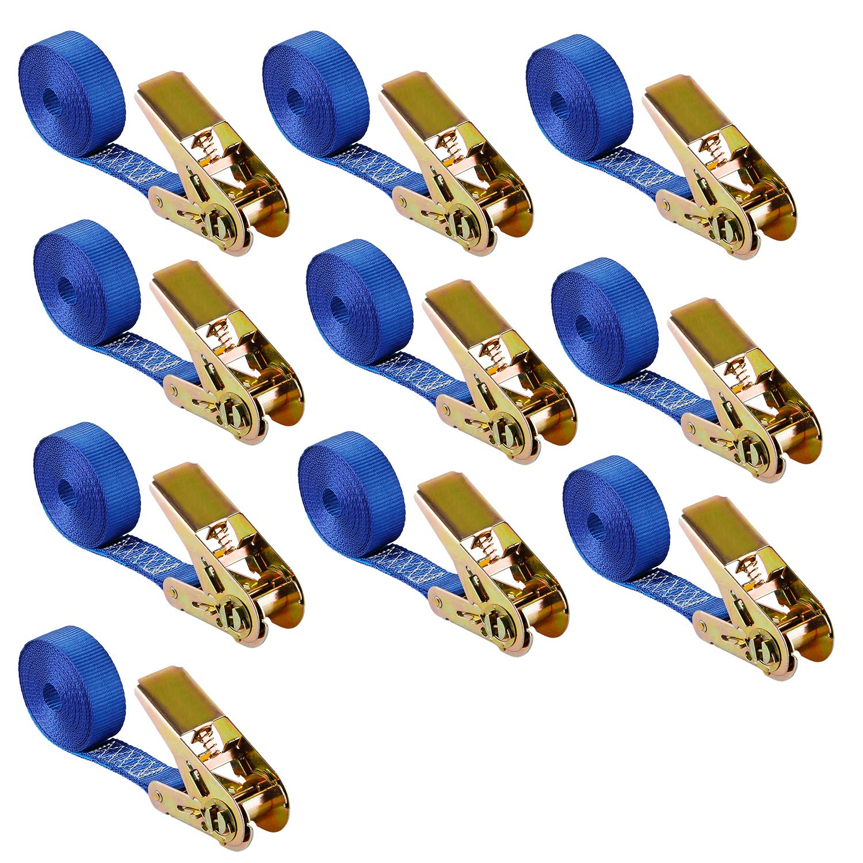 10X Lashing Strap Tension Belt Spanngurt mit Ratsche Ratchet Strap Tie Down Strap 4 M Blue 400/800 kg Truck everbest4u