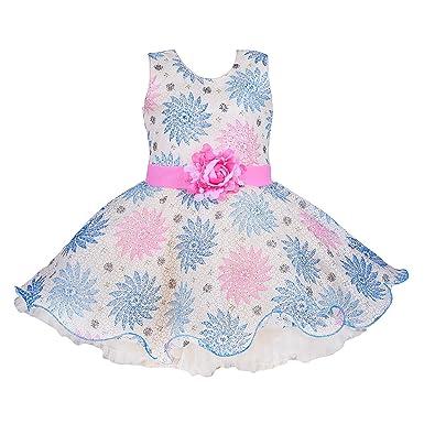 d5dbe963335f Wish Karo Baby Girls Net Frock Dress - (bxa162)  Amazon.in  Clothing ...