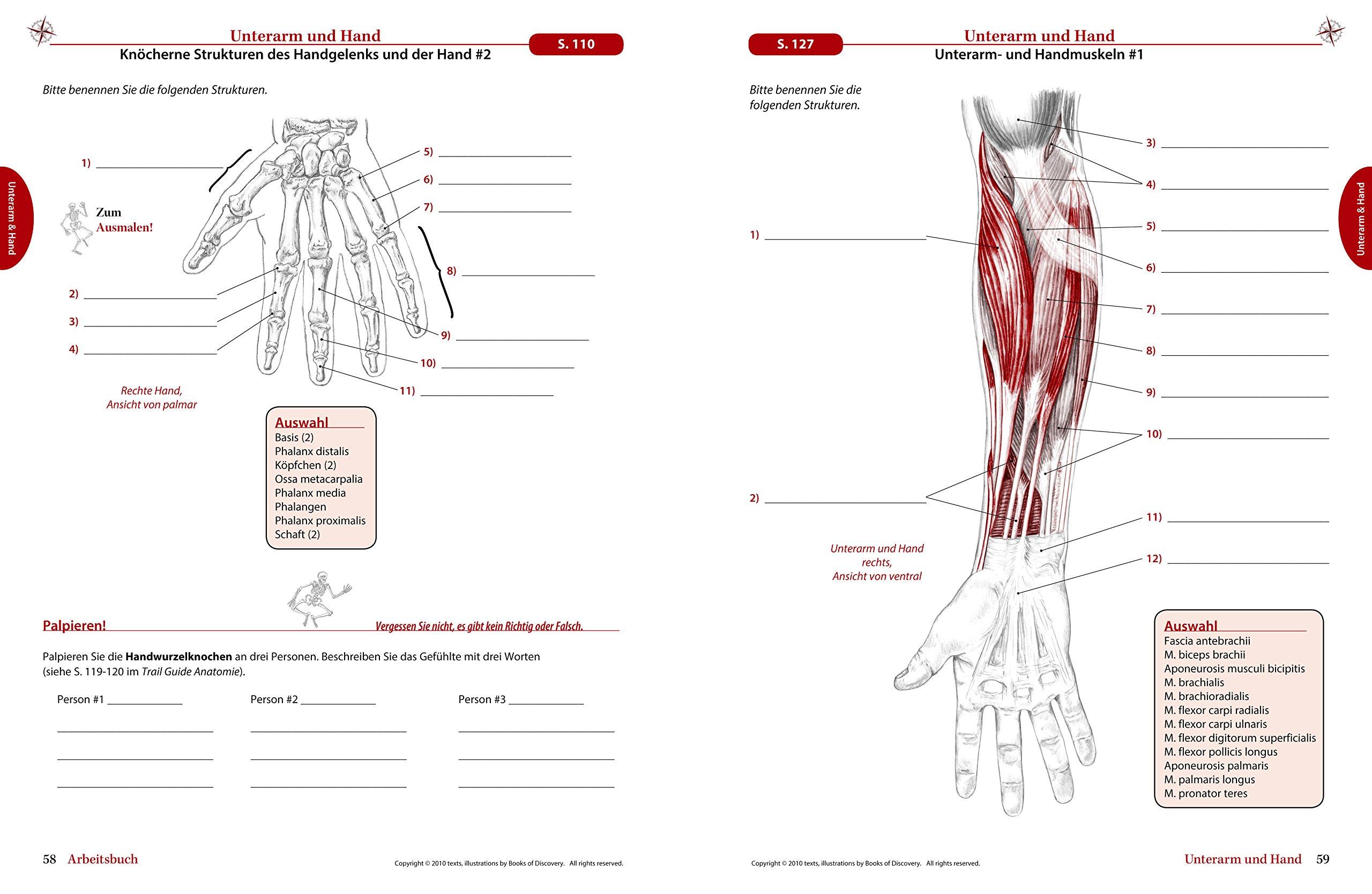 Trail Guide Anatomie Praktisch Begreifen Download Gallery - Ebooks ...