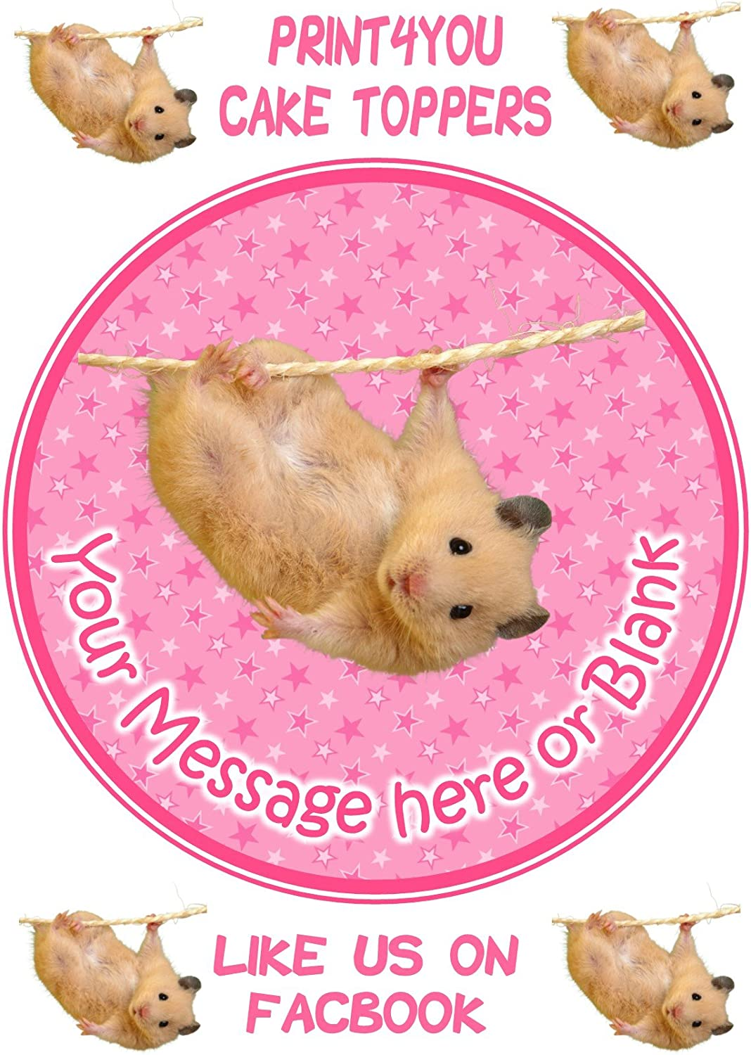 Hamster Round Edible Cake Topper Decoration Personalised