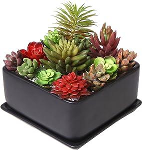 Modern 7 inch Square Ceramic Succulent Planter Pot with Drainage Tray, Window Box & Saucer, Matte Black