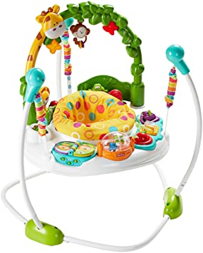 7489222b8 Amazon.com   Fisher-Price Go Wild Jumperoo   Baby