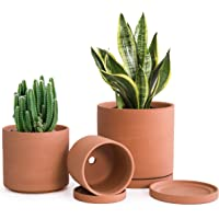 Terracotta Pots for Plants, 4.2 Inch 5.3 Inch 6.5 Inch, Succulent Planter Pot with Drainage and Saucer, 587-44-1