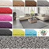 Tapis de salon shaggy poil long | 10 coloris au choix - cachet Blauer Engel | haute qualité | 160x230cm, gris