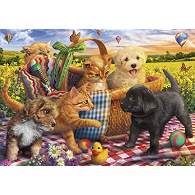 Buffalo Games - Adorable Animals - Picnic Pals - 300 Piece Jigsaw Puzzle: Toys & Games
