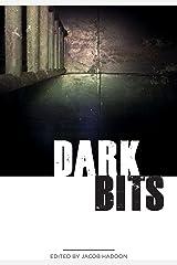 Dark Bits (QuickLII Book 1) Kindle Edition