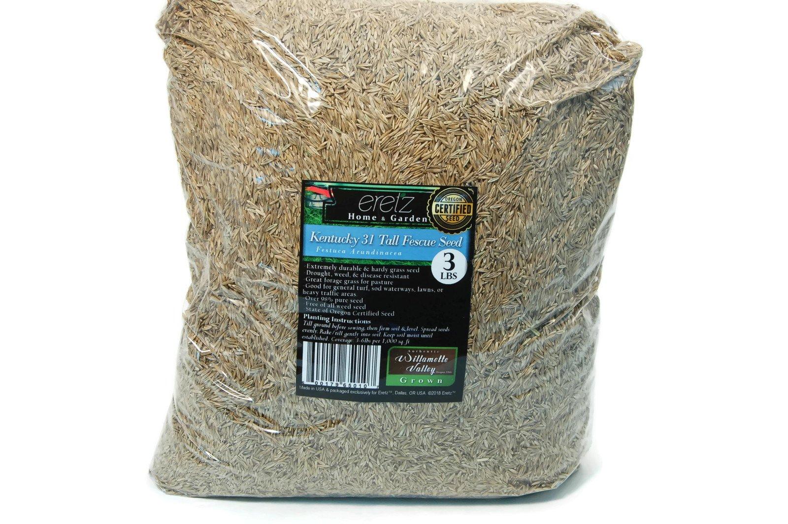 Kentucky 31 Tall Fescue Grass Seed by Eretz - Willamette Valley, Oregon Grown (3lbs)