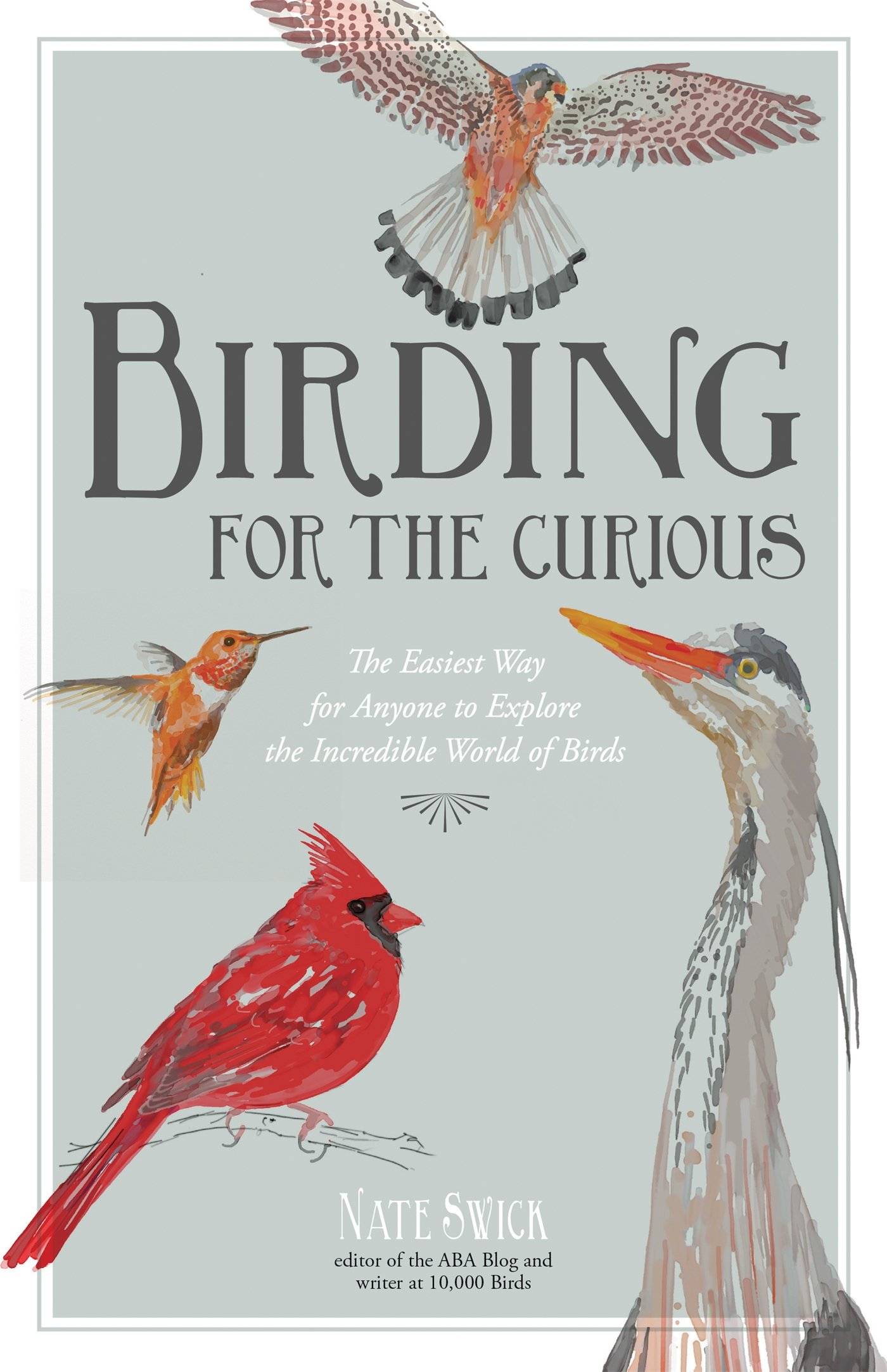birding for the curious the easiest way for anyone to explore the