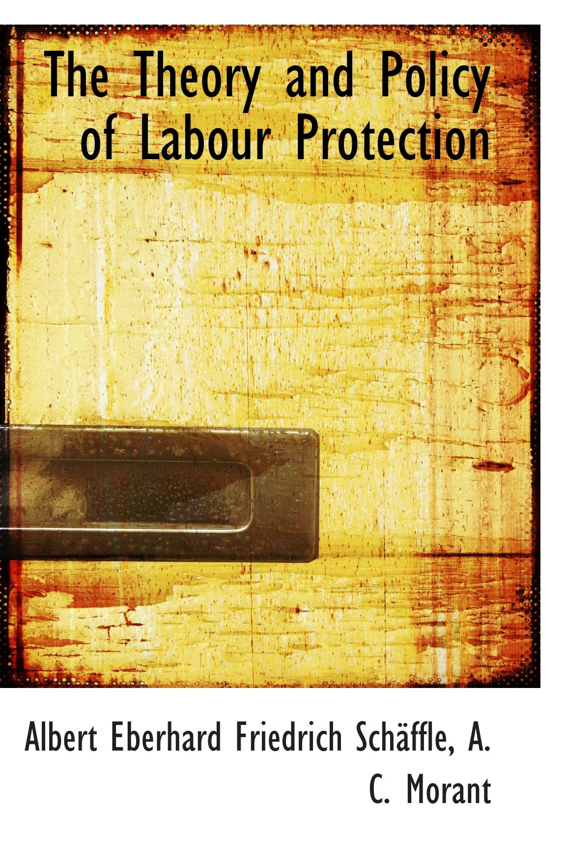 The Theory and Policy of Labour Protection ebook