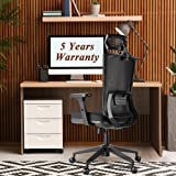 Ergonomic Office Chairs, Mesh Desk Chair with Adjustable Headrest,Seat Height and 3D Armrest,Heavy Duty High Back…