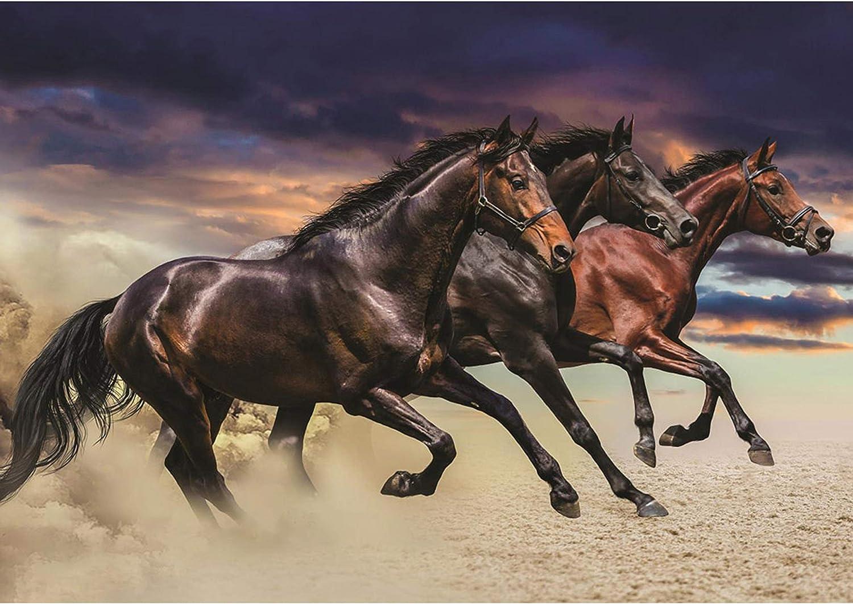 Papel Pintado Fotográfico Premium Plus fotográfico pintado–cuadro de pared–Caballos Animales Arena Cielo–No. 2620, Ocre, 416x254cm Vlies