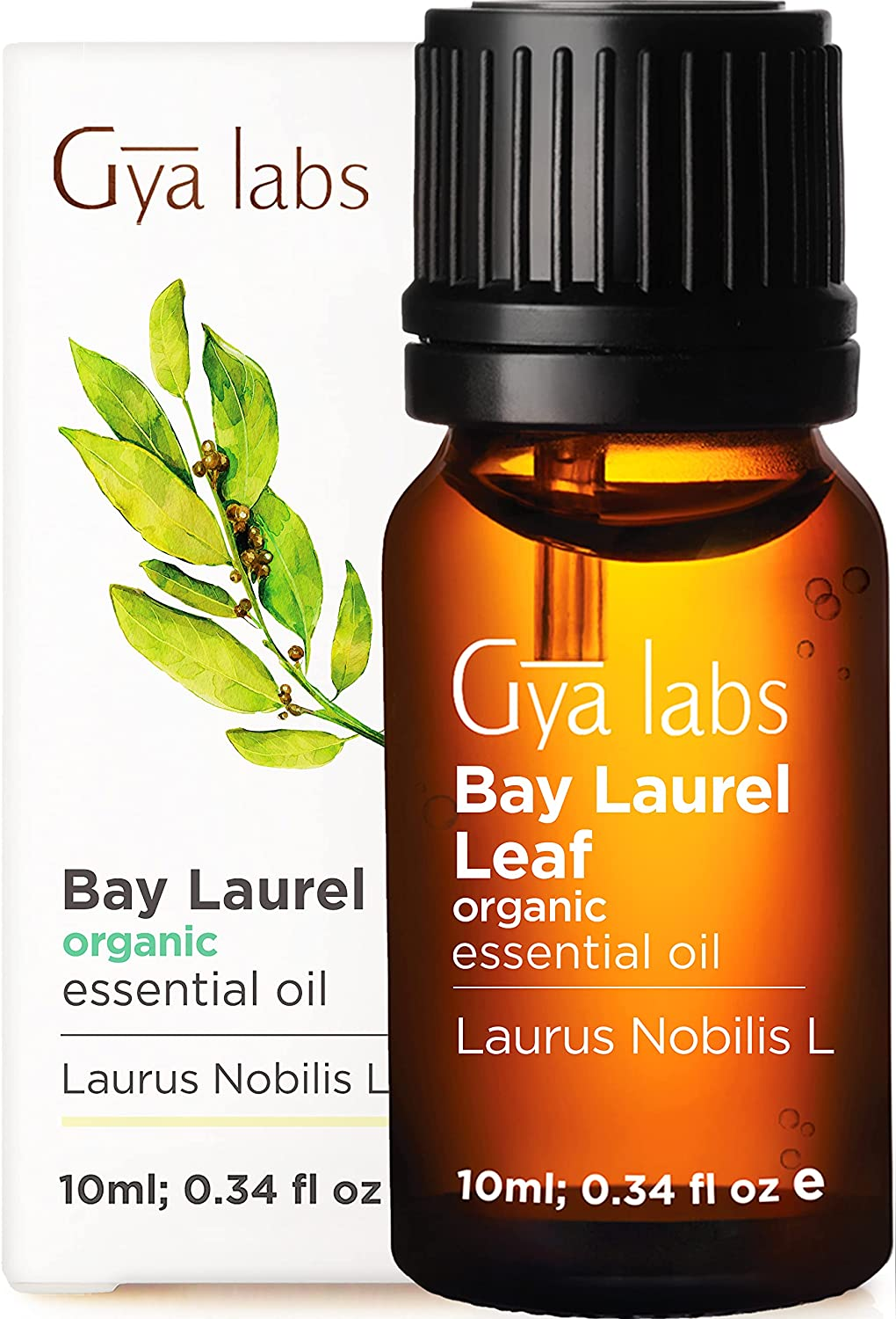 Gya Labs Organic Bay Leaf Essential Oil for Hair Growth and Muscle Pain Relief - Bay Laurel Essential Oil for Sleep and Relaxation - 100 Pure Therapeutic Grade Bay Leaf Oil for Aromatherapy - 10ml