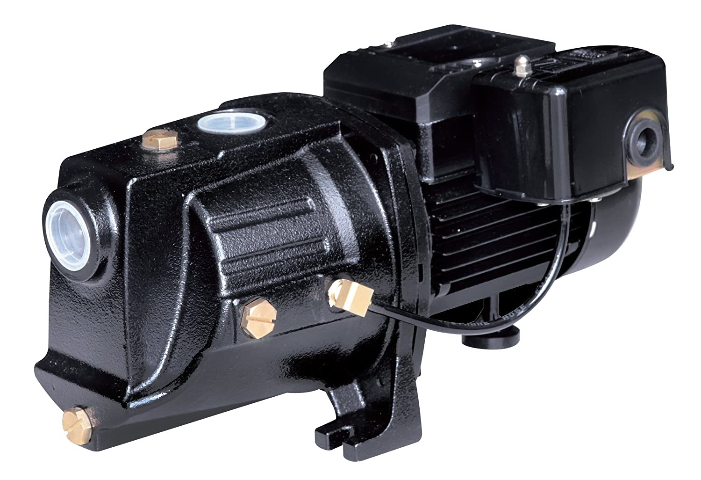 Acquaer SJC075 3/4 HP Dual-Voltage Cast Iron Shallow Well Jet Pump, Black